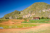 Tobacco Farm, Vinales, Cuba — Stock Photo
