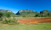 Vinales farmland, Cuba — Stock Photo