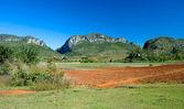 Vinales farmland, Cuba — Stock Photo