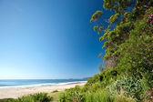 Australiska tropisk strand — Stockfoto