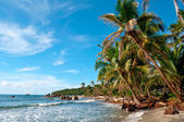 Caribbean Beach Panama — Stock Photo