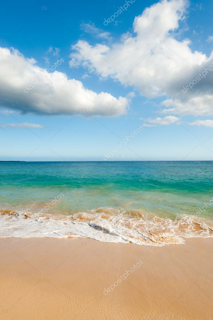 This image shows an idyllic  Hawaiin beach — Stock Photo #10272271
