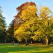 Autumn at the Stadtschloss park in Fulda, Hessen, Germany - Stock Photo