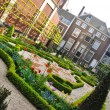 Small beautiful garden with bushes and flowers in Amsterdam, Hol — Stock Photo