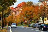 Autumn street with cars in Fulda, Hessen, Germany — Stock Photo