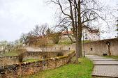 Men Monastery on a Frauenberg in Fulda, Hessen, Germany — Stock Photo