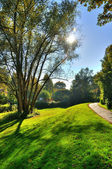 Misterious shady green alley with trees in the park in Fulda, He — Stok fotoğraf