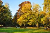 Autumn at the Stadtschloss park in Fulda, Hessen, Germany — Stock Photo