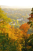 Autumn yellow trees on Frauenberg in Fulda, Hessen, Germany — Stock Photo