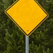 Turn right Road Sign — Stock Photo #10477877