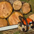 Chainsaw by Wood Pile — Stock Photo #10477914