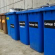 Row of Recycling and Garbage Cans — Stock Photo #10478456