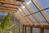 木の温室インテリア — ストック写真