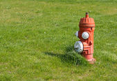 Red and White Fire Hydrant — Stock Photo