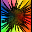 Rainbow Splat — Stock Photo