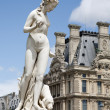 Paris - Venus Statue from Tuileries garden — Stock Photo #10152384