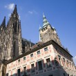 Prague - st. Vitus cathedral — Stock Photo