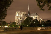 Paris - Notre Dame cathedral at night — Stockfoto
