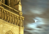 Paris - Notre-Dame cathedral in the night - detail with moon — Stock Photo