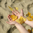 Hands of little girl and autumn leafs — Stock Photo #10218370