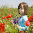 Little girl and corn roses - Lizenzfreies Foto