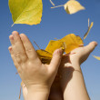 Hands of children and autumn leafs and sky - Stock fotografie