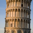 Pisa - hanging tower in evening light — Stock fotografie