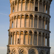 Pisa - hanging tower in evening light — Stock Photo