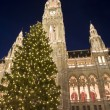 Vienna - christmastree for town-hall — Stock Photo #10220057