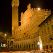 Siena - Town-hall and Torre del Mangia in the nigh — Stock Photo