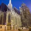 Vienna - Stephansdom cathedral — Stock Photo #10220860