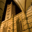 Siena - cathedral Santa Maria Assunta at night — Foto Stock