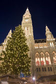 Vienna - christmastree for town-hall — Stock Photo