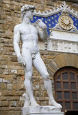 Florence - David statue by Michelangelo — Stock Photo