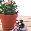 Stock Photo: Garden equipment with flower