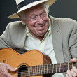 Stock Photo: Senior jazz musician with accoustic guitar wearing suit and hat.