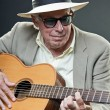 Stock Photo: Senior jazz musician with accoustic guitar wearing hat and sunglasses.