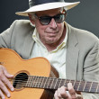 Senior jazz musician with accoustic guitar wearing hat and sunglasses. — Stock Photo #10163208