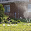 Stock Photo: Garden irrigation