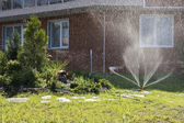 Garden irrigation — Stock Photo