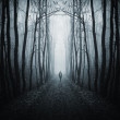 Man walking on a path in a dark forest with fog — Stock Photo