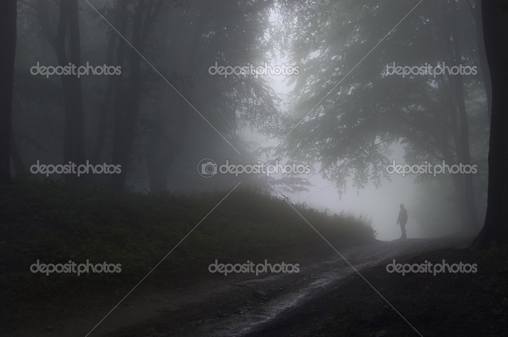 Man standing in a dark mysterious forest with fog after rain   Stock Photo #10217313