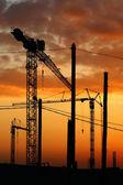 Tower crane — Stock Photo