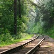 Foto Stock: Railway in wood