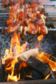 Shish kebab and fire — Stock Photo