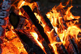 Burning firewood — Foto de Stock