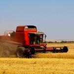 Wheat combine harvester — Stock Photo