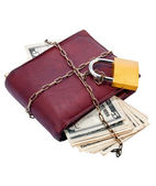Purse with money closed on padlock. — 图库照片