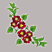 Branch pansy — Stock Photo
