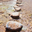 Stone path crossing a stream — Stock Photo